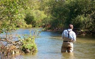 Betsie River Fly Fishing - Near Traverse City, MI