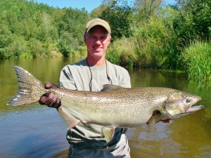 Betsie River Bright King Salmon - Guided Fly Fishing Trips