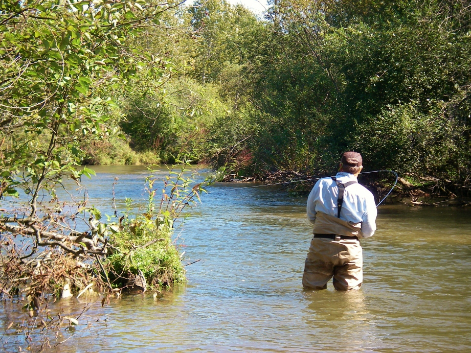 Betsie river fly fishing near traverse city mi for Betsie river fishing report