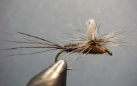 Borchers Drake Fly Pattern - Parachute