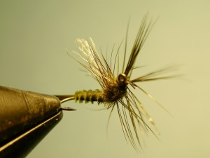 After the Hex - Blue Wing Olive (BWO)