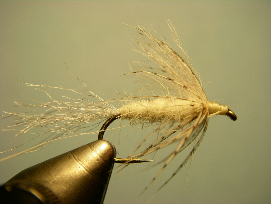 Fishing after the hex ephoron white fly current for Hatch fly fishing