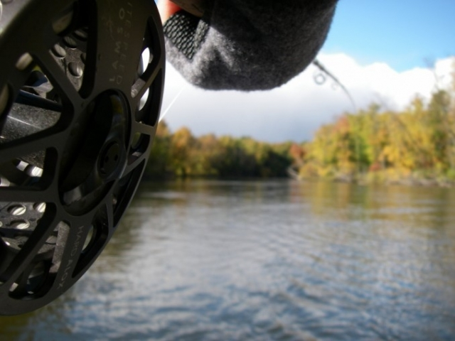 Gallery - Big Manistee River