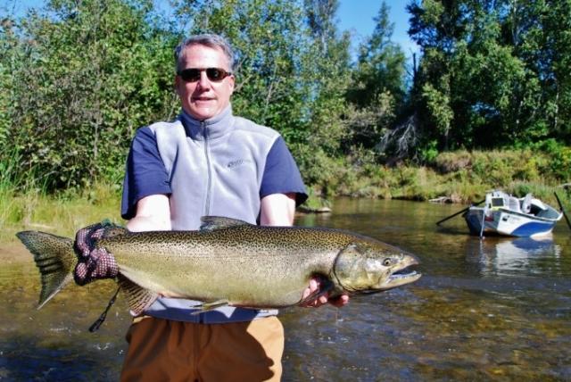 Gallery - Salmon in September