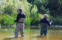 Introduce Fly Fishing to Colleagues