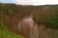 Lower Manistee River Below Tippy Dam