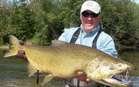 King Salmon Fly Fishing - Betsie River Near Traverse City