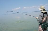 Smallmouth Bass Grand Traverse Bays, Traverse City, Michigan