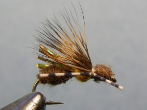 Terrestrial - Galloup's Ant Acid Fly Pattern