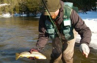 Trout - Winter Fly Fishing