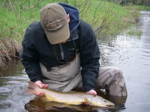 Try Streamer Fishing