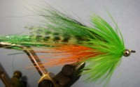 Whistler Fly Pattern - Fire Tiger