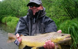 Seductive Streamer Fishing - Bass Angler Crossover