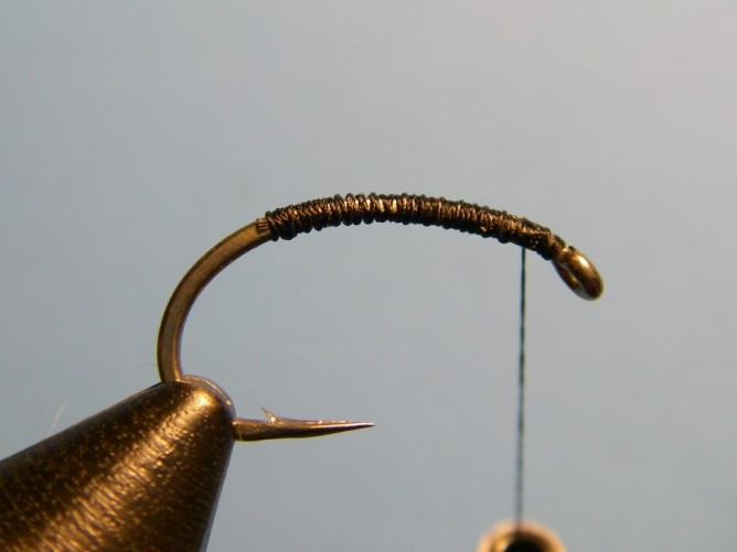 Early Black Stonefly Nymph Step - 1