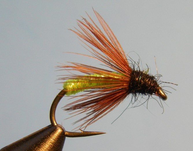 Top 5 Steelhead Flies - Caddis Pattern Boogie Woogie Caddis