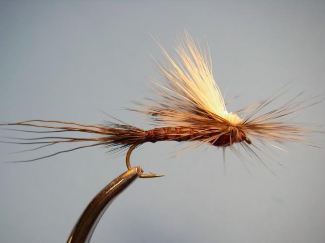 Tilt Shoot Iso Isonychia Fly Pattern
