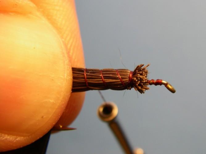 Tilt Shoot Iso Isonychia - Step 4