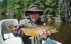 Dry Fly Do's - Brown Trout