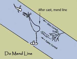 Dry Fly Do's - Mend