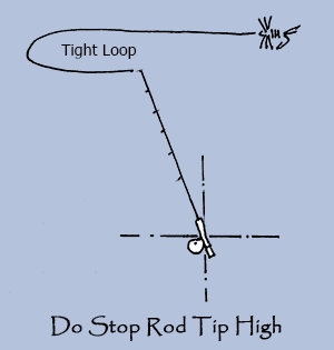Dry Fly Do's - Rod-Tip-High