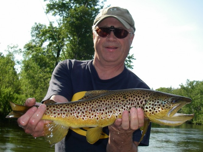Autumn Offender - Brown Trout