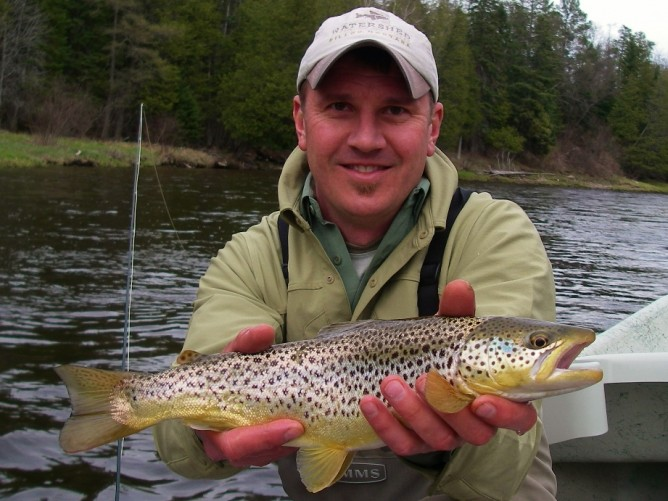 Borchers Emerger - Brown Trout