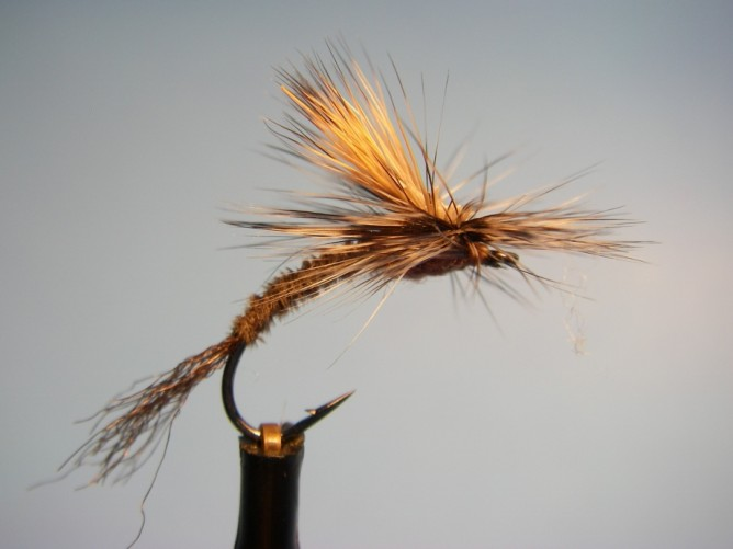 Borchers Emerger Pattern