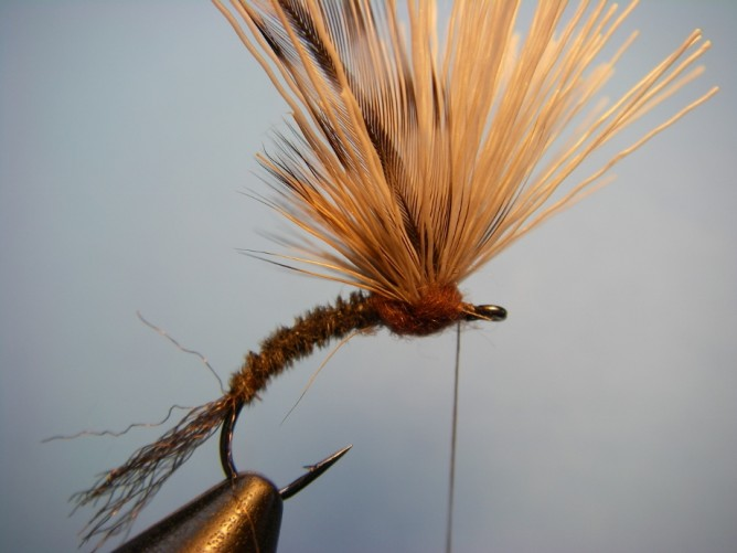 Borchers Emerger Step - 10