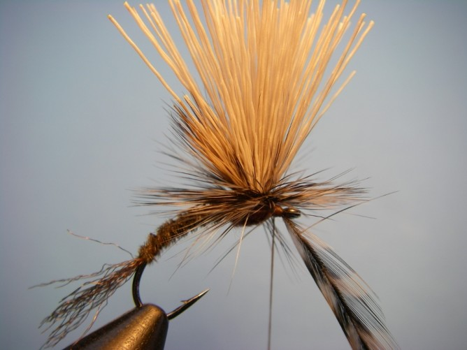 Borchers Emerger Step - 11