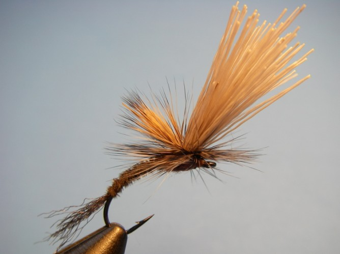 Borchers Emerger Step - 12