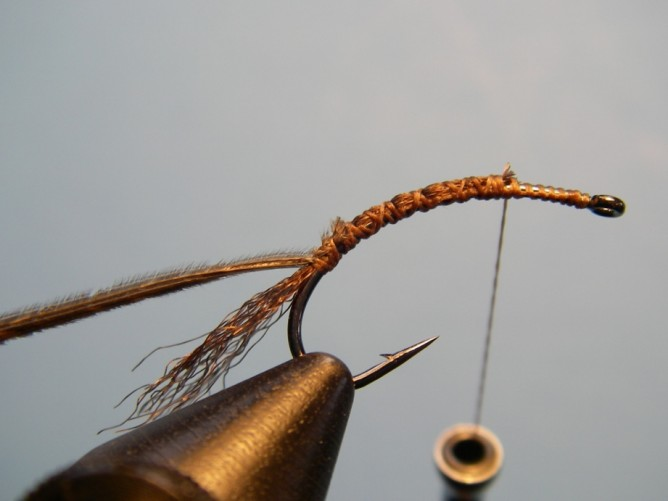 Borchers Emerger Step - 3.5