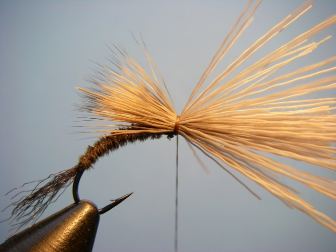 Borchers Emerger Step - 6