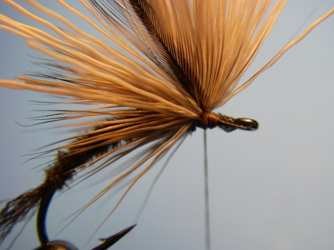 Borchers Emerger Step - 9