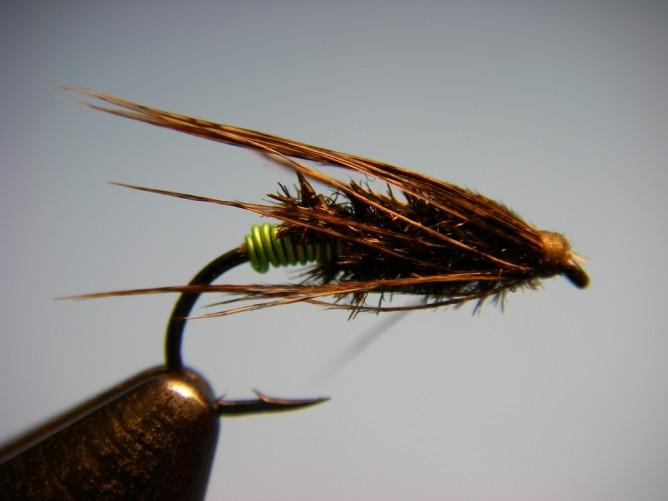 Green Butt Soft Hackle - Diving Caddis Pattern - Wet