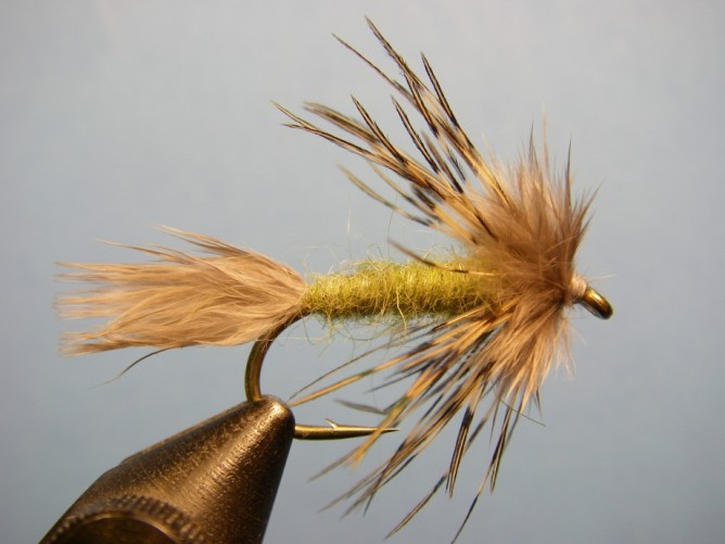 Sparrow Fly Pattern - Olive