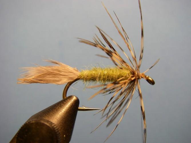 Sparrow - Step 5.5