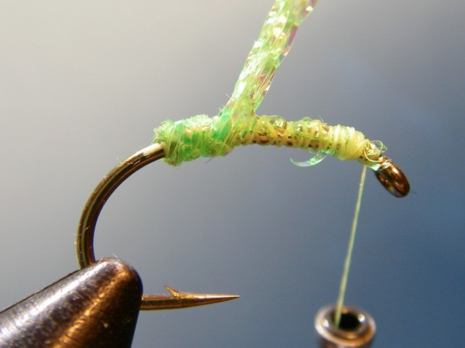 Green Caddis - Diamond Braid - Step 3a