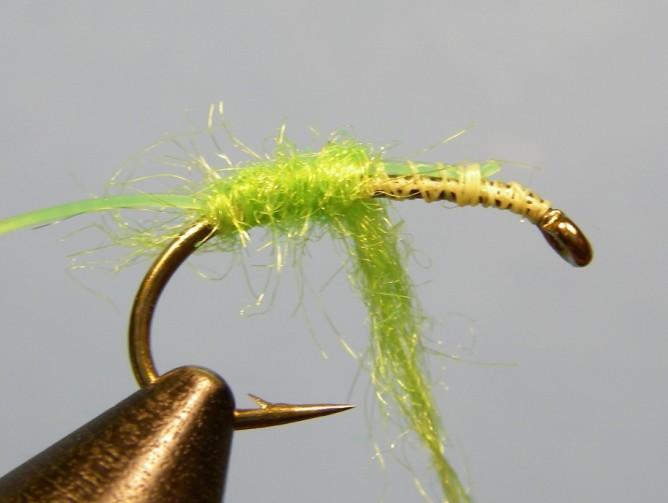 Green Caddis - Dubbed - Step 3a