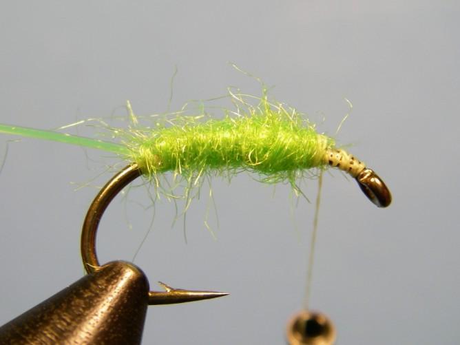 Green Caddis - Dubbed - Step 3b