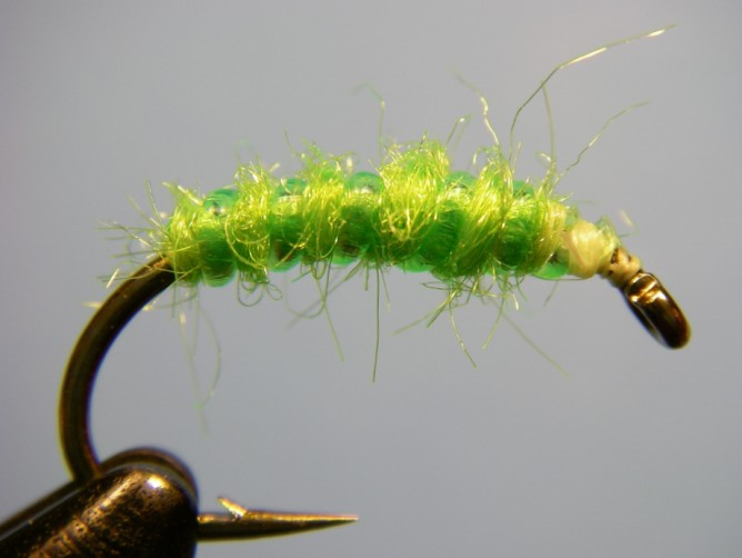 Green Caddis - Dubbed - Step 4