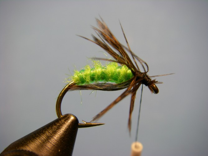 Green Caddis - Dubbed - Step 6