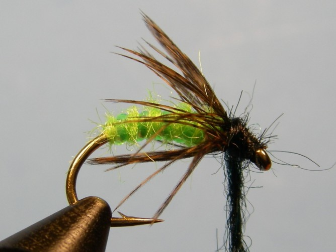 Green Caddis - Dubbed - Step 7