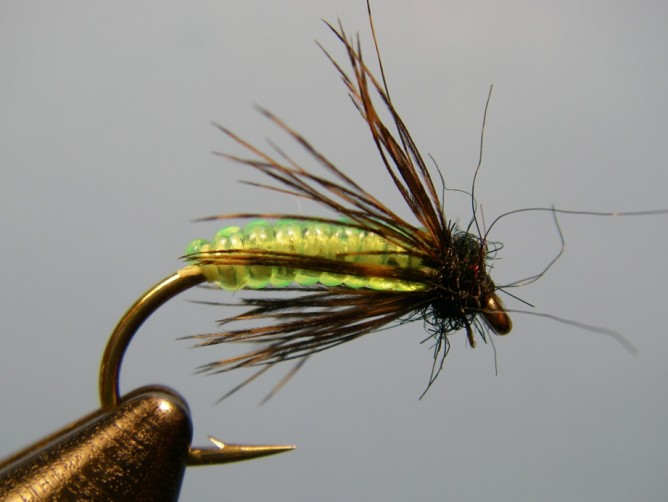 Green Caddis - Vinyl Rib