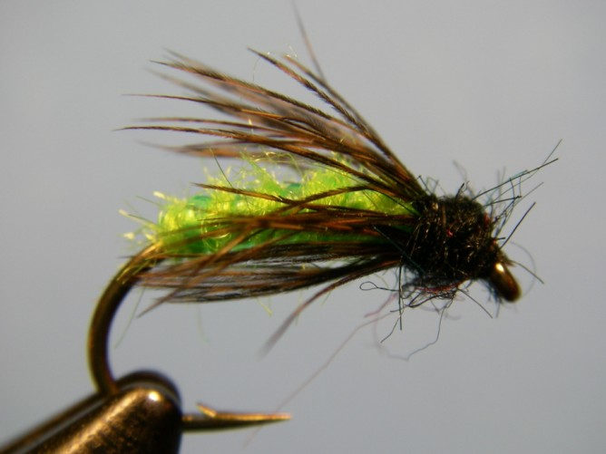 Steelhead Green Caddis - Dubbed
