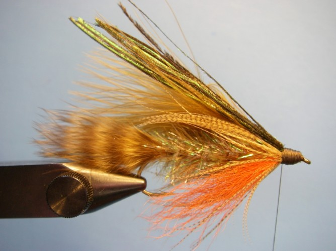 Teds Brook Trout - Step 10