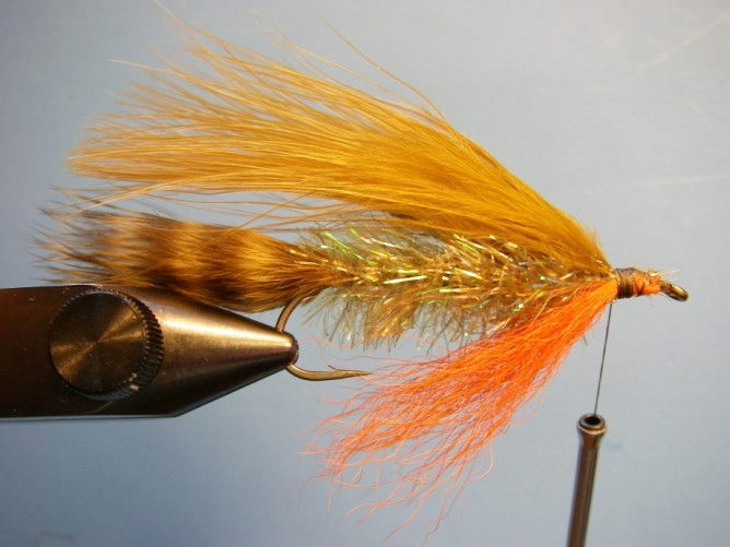 Teds Brook Trout - Step 6
