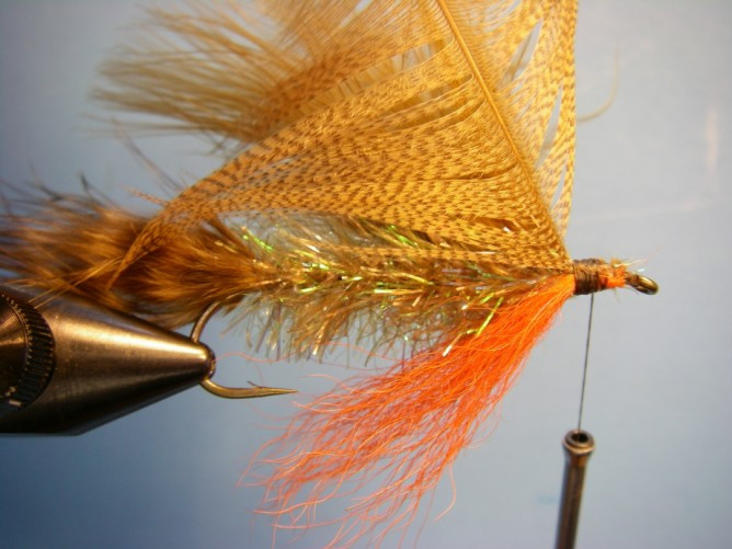 Teds Brook Trout - Step 7