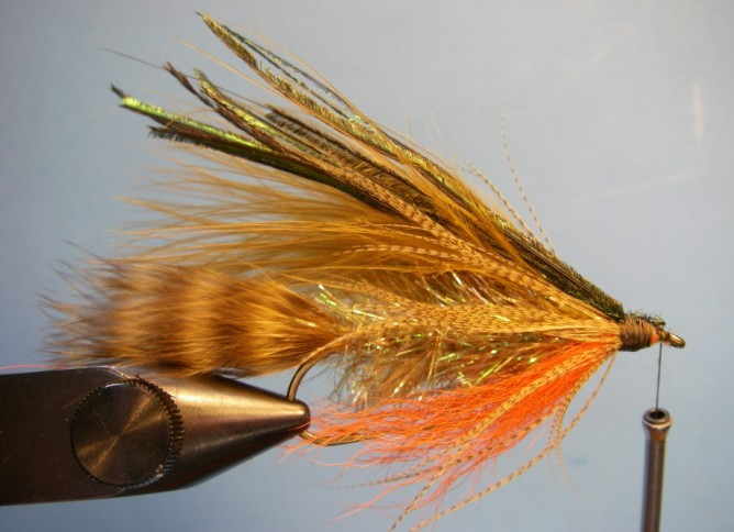 Teds Brook Trout - Step 9