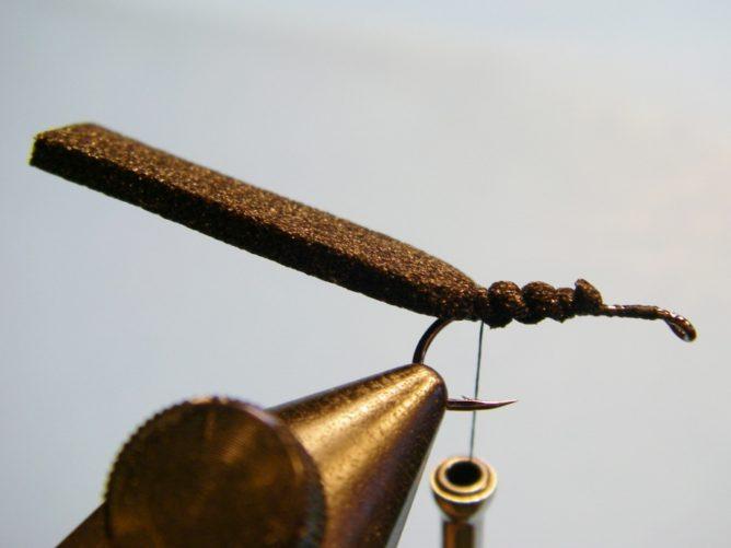 A Fly - Step 3