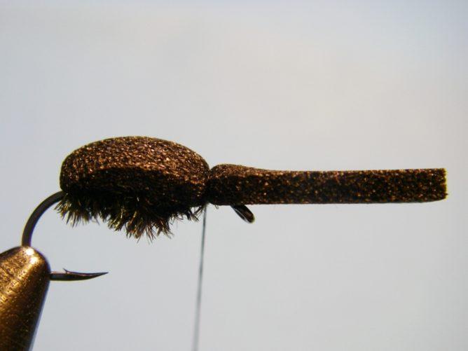 A Fly - Step 6